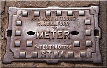 SO7875 : Meter cover - Load Street, Bewdley by The Carlisle Kid