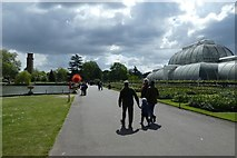 TQ1876 : Palm House, Pond and Summer Sun by DS Pugh