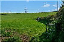 SS5726 : North Devon : Grassy Field by Lewis Clarke