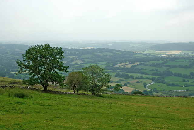 Hill pasture above the Teifi Valley, Ceredigion