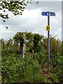TM4978 : Signpost on Rissemere Lane East by Adrian Cable