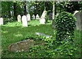 TG2408 : A toppled gravestone in Section B by Evelyn Simak