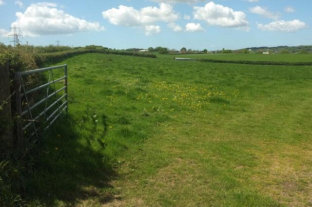 Field west of Chapelton