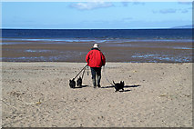 NS3229 : A dog walker on Troon South Sands by Walter Baxter