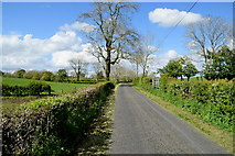 H4965 : Rarone Road by Kenneth  Allen
