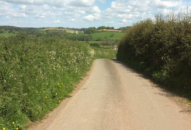 Lane to Chapelton