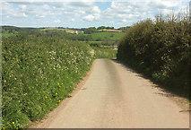 SS5726 : Lane to Chapelton by Derek Harper