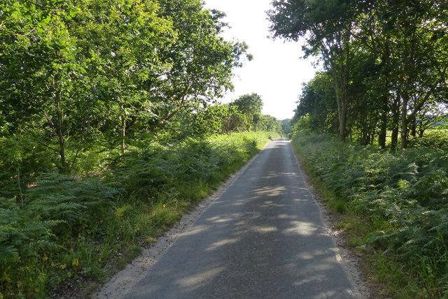 Lodge Road towards Walberswick