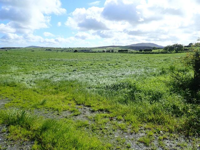 View SE across improved grass land from the Tate Road
