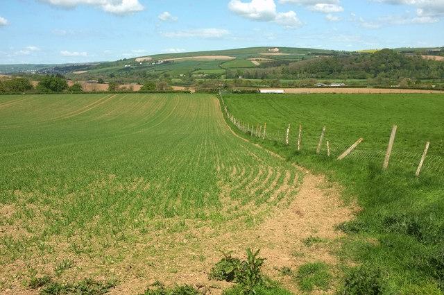 Farmland east of Hildrew