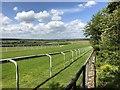 SU8911 : Goodwood Racecourse by Chris Thomas-Atkin