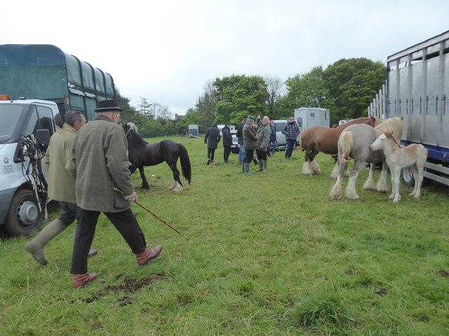 Stow Horse Fair, May 2019
