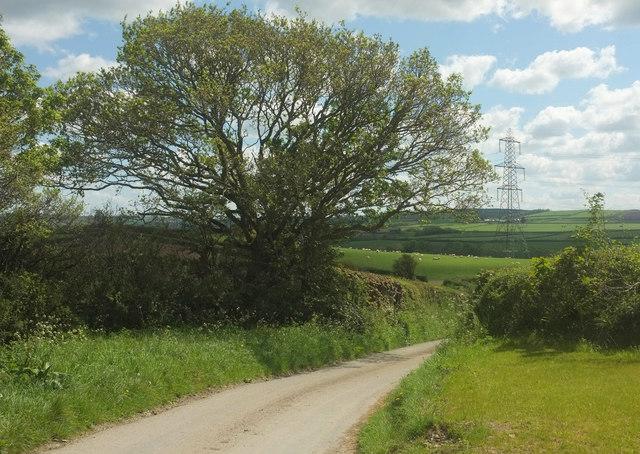 Lane from Hildrew