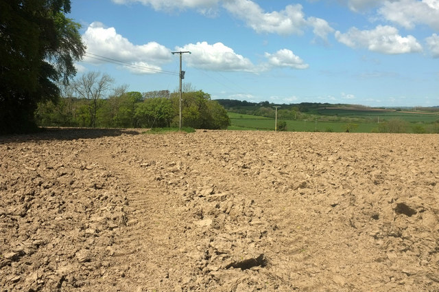 Ploughed field, Ensis