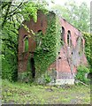 SJ2067 : Taylor's Shaft Engine House, Hendre by Alan Murray-Rust