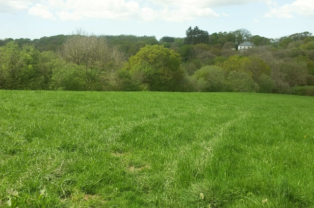 Meadow near Somer's Hiscott
