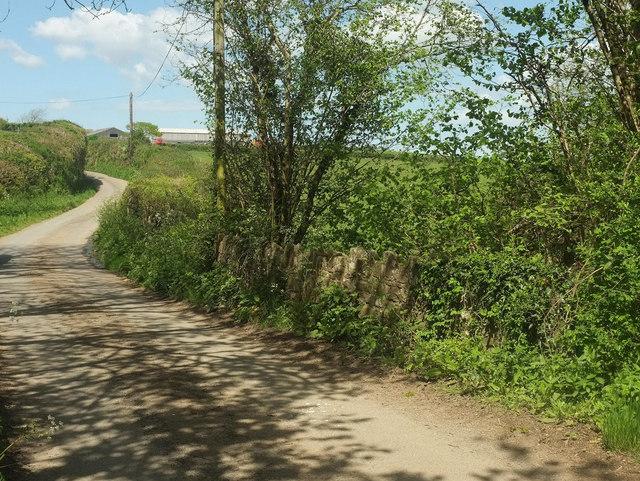 Lane at Portford Bridge