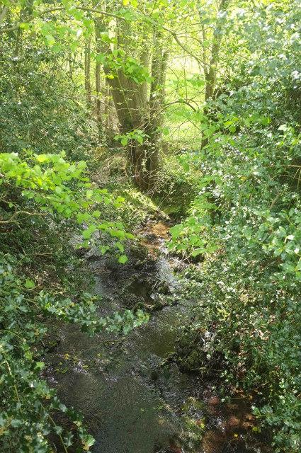 Upstream from Portford Bridge
