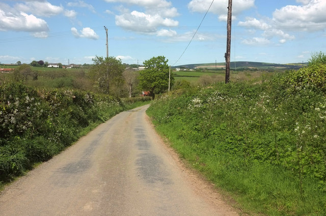 Lane to Portford Bridge