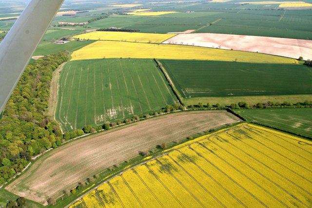Crop marks in field south of the Valley, Wold Newton: aerial 2019 (3)