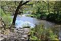 NT2340 : Riverside path, Neidpath by Jim Barton