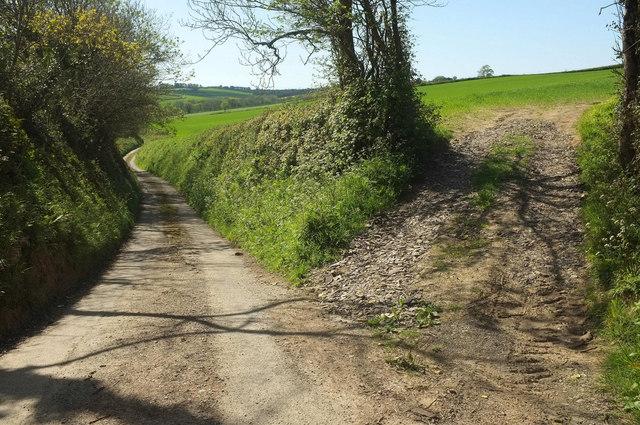Lane to Sideham