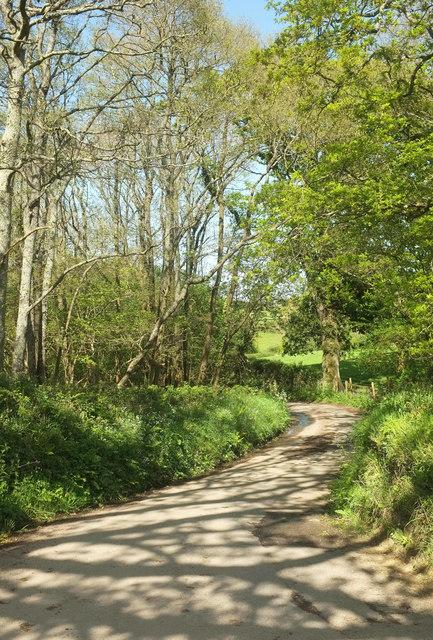 Lane to Tawstock