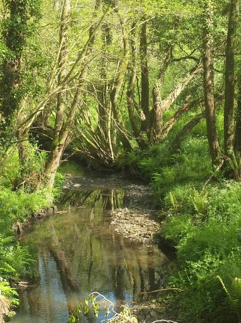 Stream near Hillside