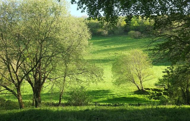 Valley near Hannaford