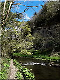 SK1273 : Chee Dale: a perfect piece of Peak District picturesqueness by Chris Downer