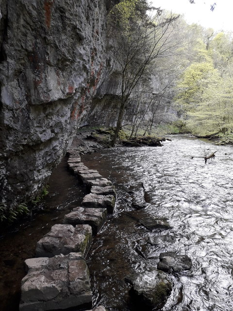 Chee Dale: more stepping stones on the riverside path