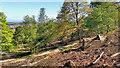 NZ6114 : Powder House, Belmont Ironstone Mine by Mick Garratt