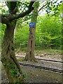 TQ0989 : Julierpass in London by Chris Wood