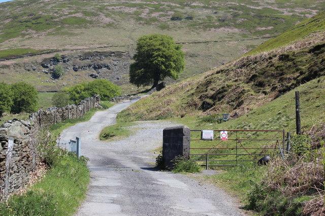 Cattle grid and gate, Cwm Tyleri