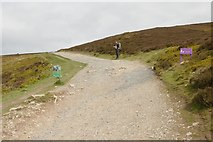 SJ1561 : Offa's Dyke path by Mark Anderson