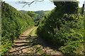 SX7248 : Green lane to the Avon valley #4 by Derek Harper