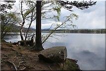 NH9718 : Loch Garten by Alan Reid