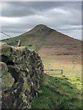NZ5812 : View to Roseberry Topping by David Robinson