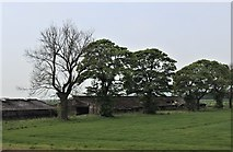 NS4566 : Sheds at Blackstoun by Alan Reid