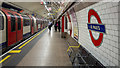 TQ3281 : Platform, St. Paul's Underground Station by Rossographer
