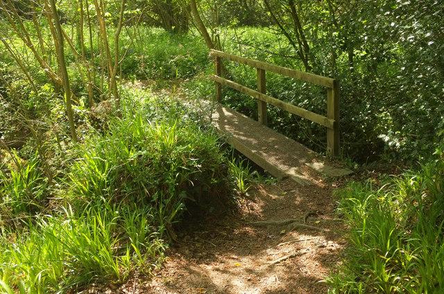Footbridge, Silveridge Wood