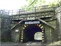 SD9926 : Railway bridge over Wood Top  Road by Stephen Craven