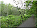 SD9926 : Start of the tarmac path east of Hebden Bridge station by Stephen Craven