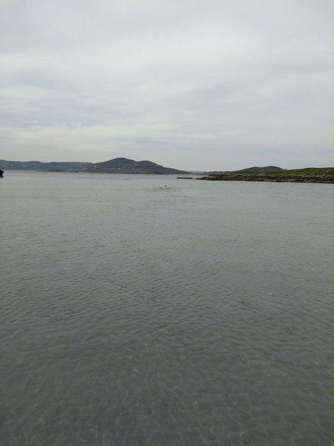 Swimming in Ballyhooriskey Bay