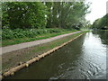 SK5701 : Newly installed coir roll on the towpath edge, Aylestone by Christine Johnstone