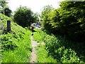 SO8689 : Pub Path by Gordon Griffiths