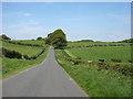 NY5355 : Minor road near Castle Carrock by David Purchase