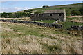 SD8489 : Stone barn on moorland above Widdale Beck by Roger Templeman