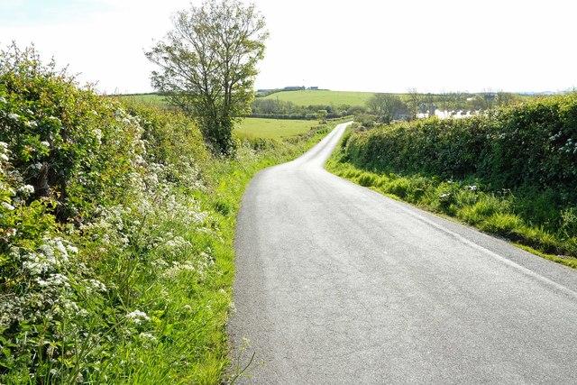 Lane near Llanfaethlu