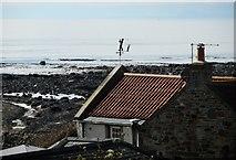NO5603 : Coastal weather vane by Richard Sutcliffe